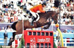 Tamino OS Londen 2012